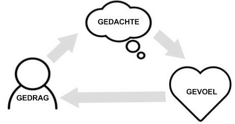 Psycholoog Gedragstherapeut Leuven